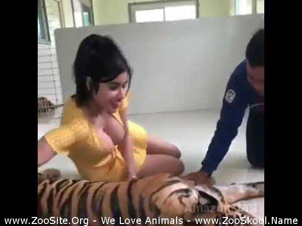 177151409 0027 fun tiger sex tiger love garls - Tiger Sex Tiger Love Garls