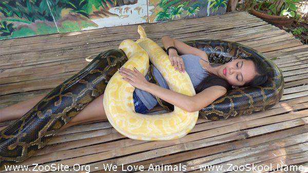 177152112 0057 fun snake massage helps girl conquer fear of snakes - Snake Massage Helps Girl Conquer Fear Of Snakes