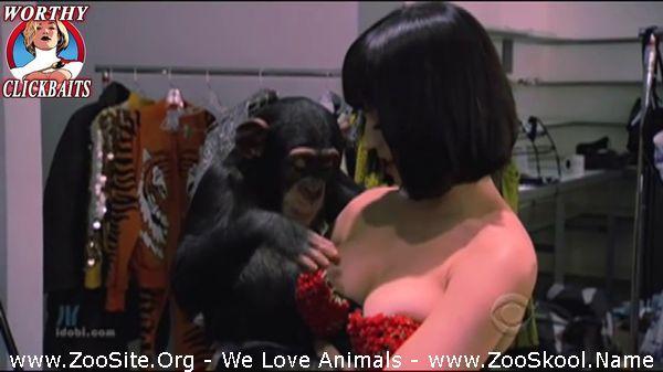 177152307 0093 fun pervert cute girls from animals - Pervert Cute Girls From Animals